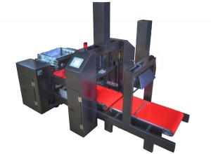 Scaled down model of ACM rapid molder